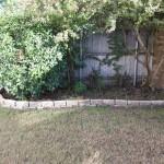 10/27/2009 Rental Home Landscape (28)