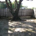 10/27/2009 Rental Home Landscape (23)