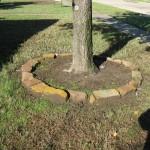 10/27/2009 Rental Home Landscape (15)