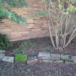 10/27/2009 Rental Home Landscape (13)