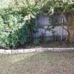 10/27/2009 Rental Home Landscape (5)