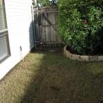 10/27/2009 Rental Home Landscape (3)