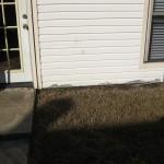 10/27/2009 Rental Home Landscape (1)