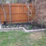 4/5/2010 Spring Beds (29)