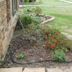 3/22/2011 Spring Garden Plans (10)