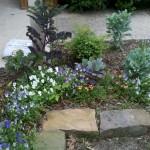 5/19/2011 May Front Yard (7)