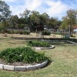 11/12/2011 AARS Test Garden (12)