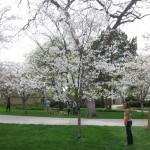 3/17/2012 March Arboretum (153)