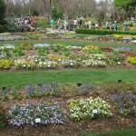 3/17/2012 March Arboretum (16)
