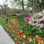 3/17/2012 March Arboretum (168)