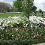 3/17/2012 March Arboretum (30)