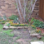 3/17/2012 March Flower Beds (1)
